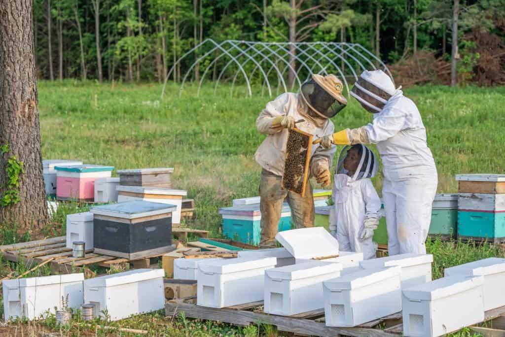 Honey Bee-Keepers Family